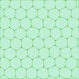 Honeycombs Royalty Free Stock Image