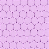 Honeycombs. Abstract vector background imitating honeycombs. Net from cells of organic form Royalty Free Stock Images