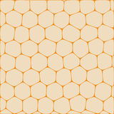 Honeycombs. Abstract vector background imitating honeycombs. Net from cells of organic form Royalty Free Stock Photo