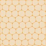 Honeycombs Royalty Free Stock Photo