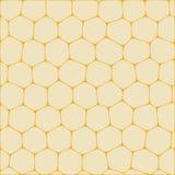 Honeycombs Stock Photos