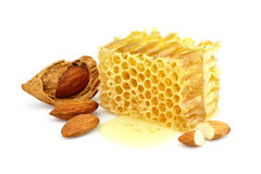 Honeycombs with almonds Stock Image