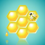 Honeycombs and Bee Vector Illustration. Honeycombs and Bee on Blue Background, vector illustration vector illustration