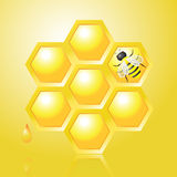 Honeycombs and Bee on Yellow Vector Illustration Stock Photo