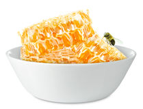 Honeycombs in a bowl Royalty Free Stock Image