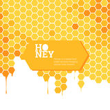Honeycombs bright background Stock Images