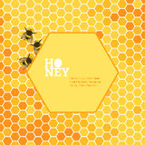 Honeycombs bright background Stock Photography