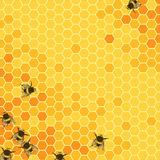 Honeycombs bright background Royalty Free Stock Image