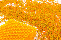Honeycombs and colored pollen on a white Royalty Free Stock Image