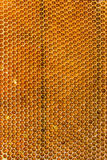Honeycombs filled with honey closeup. In each cell of honeycomb the reflection of light in the form of an asterisk. Texture Royalty Free Stock Photos