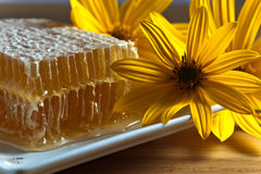 Honeycombs and flowers of Jerusalem artichoke Stock Photo