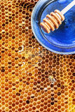 Honeycombs Stock Photography