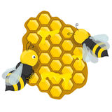 Honeycombs with honey bees Stock Photo