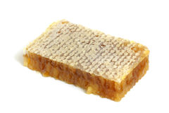 Honeycombs with honey Stock Images