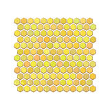 Honeycombs are honeycomb hexagonal. On a white background. Vector illustration for your design Royalty Free Stock Photos