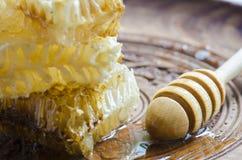 3 Honeycombs i miodowej chochla Obrazy Stock