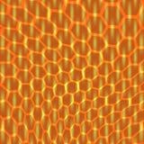 Honeycombs miód Zdjęcie Stock