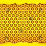 Honeycombs in the shape of hexagon, puddle of honey, bee. Vector illustration stock images