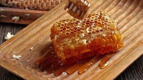 Honeycombs z dolewanie miodem zbiory wideo