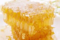 Honeycomp Royalty Free Stock Photos