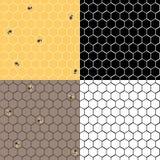 Honeycpmb uppsättning Royaltyfri Fotografi