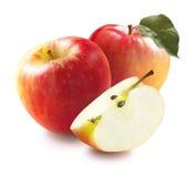 Honeycrisp äpplen och fjärdedel på den vita bakgrundsoptioen royaltyfria bilder