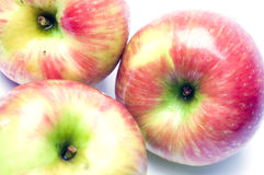 Honeycrisp apple variety Stock Photos