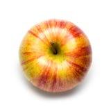 Honeycrisp Apple on White. Background royalty free stock photo