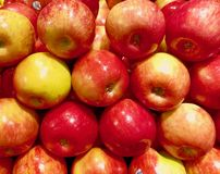 Free Honeycrisp Apples Stacked Royalty Free Stock Photography - 155853987