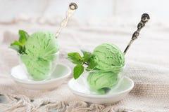 Honeydew ice cream in cup Royalty Free Stock Photos