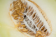 Honeydew (macro shot) Stock Photo