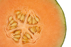 Honeydew melon in close up Stock Photos