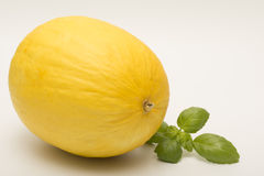 Honeydew melon isolated on a white background. Fresh Honeydew melon isolated on a white background Stock Images