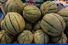 Honeydew melons Stock Image