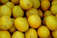 Honeydew Melons at Market, Moulay Idriss Zerhoun, Morocco Royalty Free Stock Photography