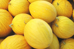 Honeymelons Stock Photography