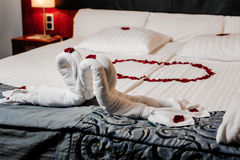 Honeymoon bed decoration. Honeymoon bed decorated with red rose petals and towels Stock Image