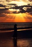 Honeymoon Island, Florida Stock Photo