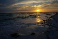 Honeymoon Island State Park, Florida. Beautiful sunset at Honeymoon Island State Park, Florida stock photography