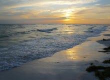 Honeymoon Island State Park, Florida Royalty Free Stock Images