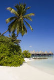 Honeymoon in The Maldives, Eden on Earth stock image