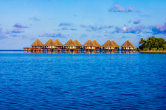 Honeymoon in The Maldives, Eden on Earth royalty free stock photo