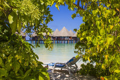 Honeymoon in The Maldives, Eden on Earth royalty free stock photography