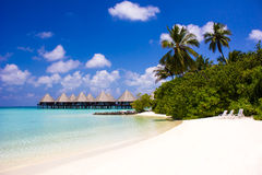 Honeymoon in The Maldives, Eden on Earth stock photos