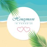 Honeymoon in paradise design on the beach with palm leaf. Vector illustration EPS10 royalty free illustration