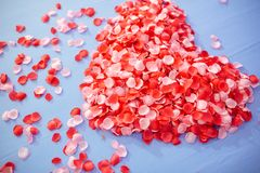 Honeymoon suite, Wedding bed topped with rose petals set to heart from for valentine. Valentine background.Close up heart shape from pink rose petals on the Stock Photos