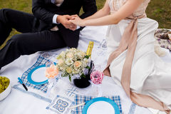 Honeymooners joined hands and sitting on a picnic in the park. Wedding photograph of a young couple of lovers who are just married, are close to each other in Royalty Free Stock Photo