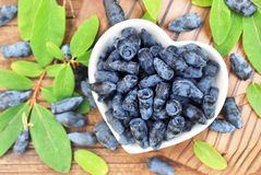 Honeysuckle berries on heart-shaped bowl stock photography