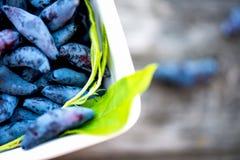 Honeysuckle Berries madura en cuenco Fotografía de archivo