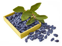 Honeysuckle berry fruits in a wood box Royalty Free Stock Images